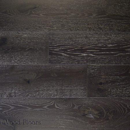 OWB-1335-European-Oak-Quercus-Mirandola