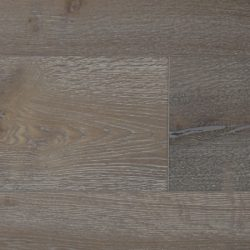 SSEO-1512-European-Oak-Quercus-Seville-14-1140x450