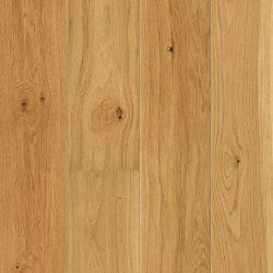 Oak Animoso