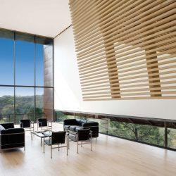 Solid maple hardwood flooring