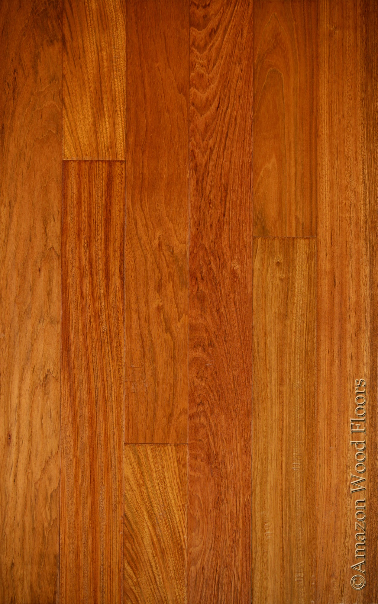 Brazilian cherry jatoba natural amazon wood floors for Cherry hardwood flooring