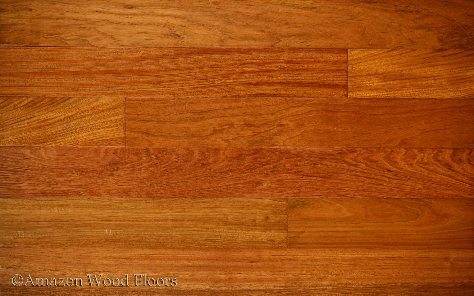 Brazilian cherry jatoba natural amazon wood floors for Cherry wood flooring
