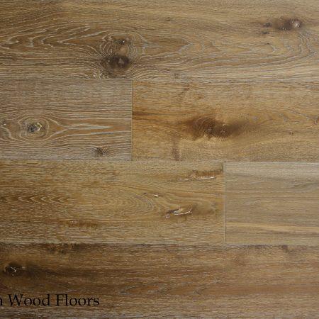 OWB-1331-European-Oak-Quercus-Palarmo-21