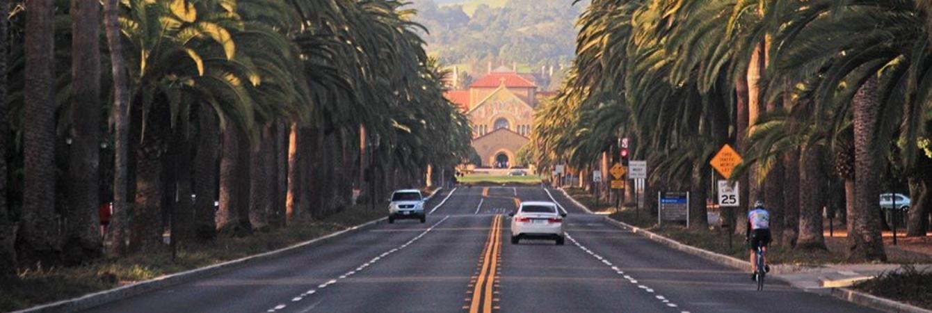 Escorts pala alto california